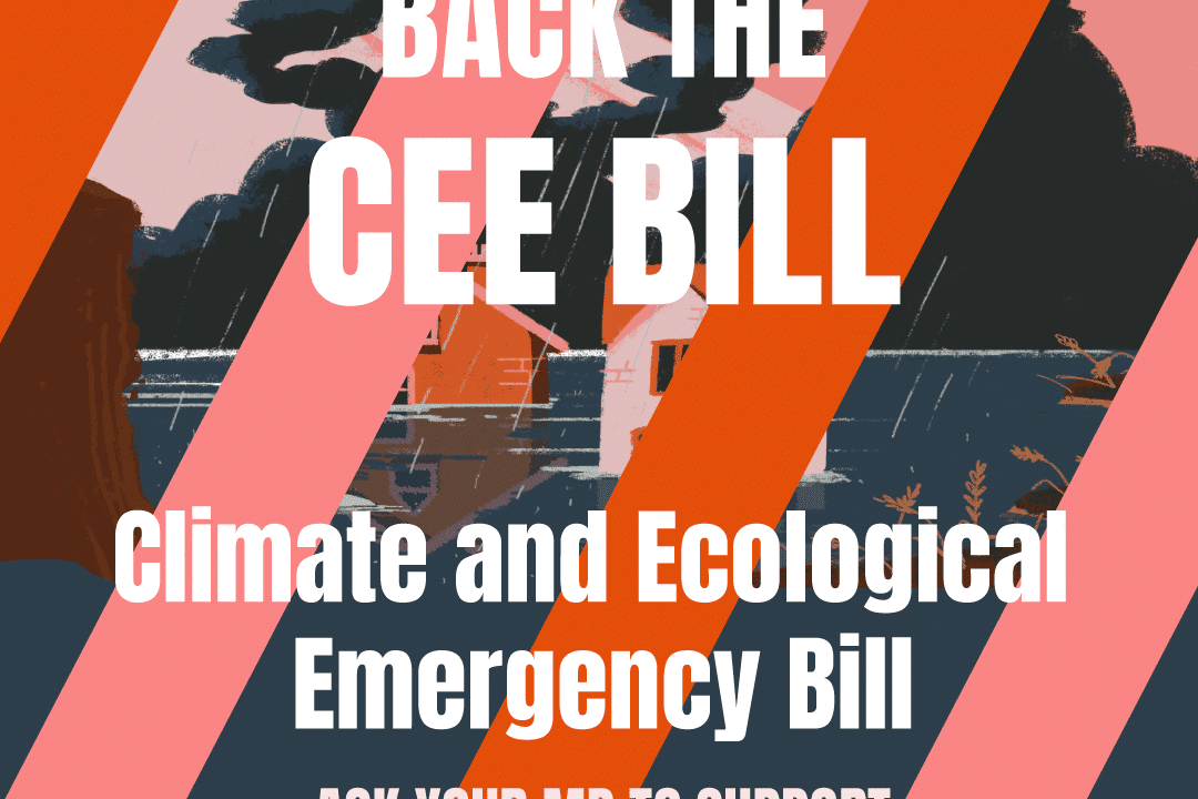 Planet Mark joins Climate and Ecological Emergency Bill Alliance