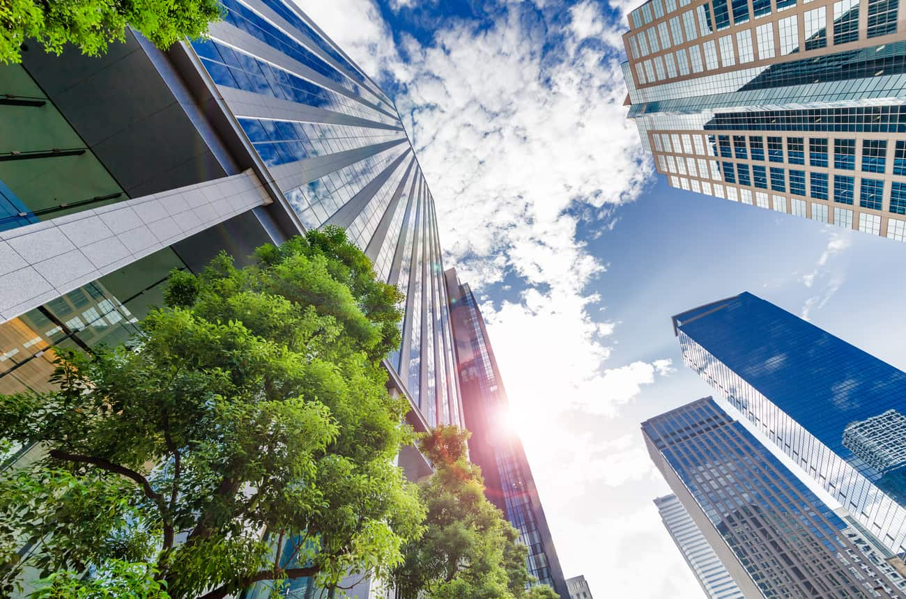 Buildings with trees