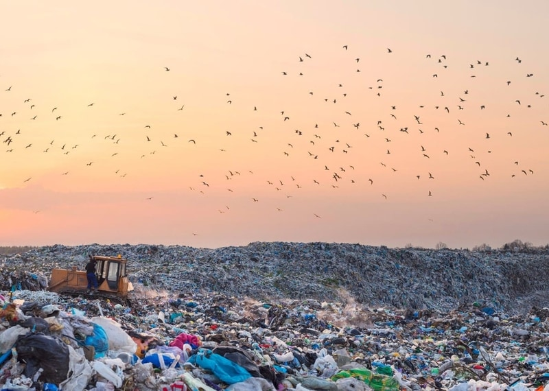 Make Your Mark: What Happens to My Waste